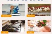 산동성문화관광청, '프렌들리산동' 문화관광 이벤트 실시
